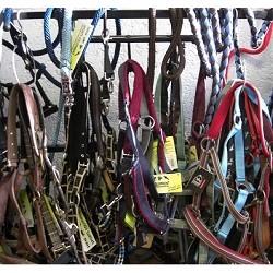 Halsters en touwen