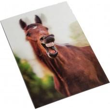 Postkaart - Geeuwen- 3D
