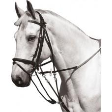 NORTON Gogue met pulley's Pony