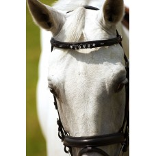 "NORTON ""Letter"" frontriem Pony"