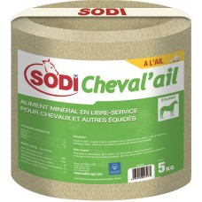 SODICHEVAL'AIL zout blok met knoflook