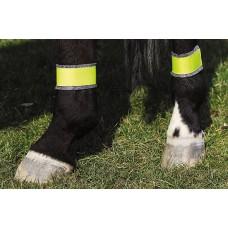 Gele bandages voor achterbenen