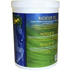 HIPPOTONIC Magnesium + Vitamin B